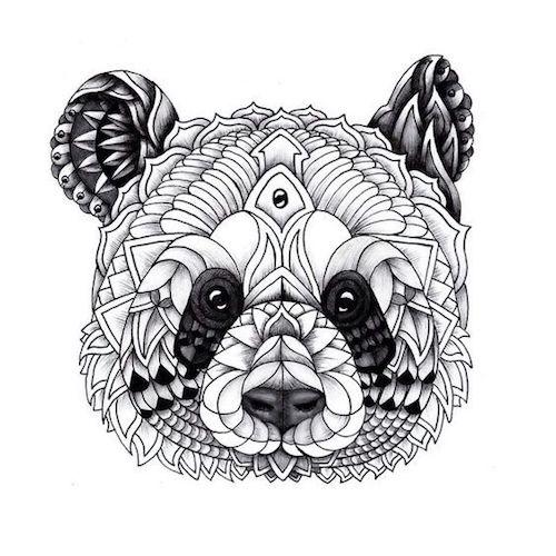 cara de oso panda para colorear
