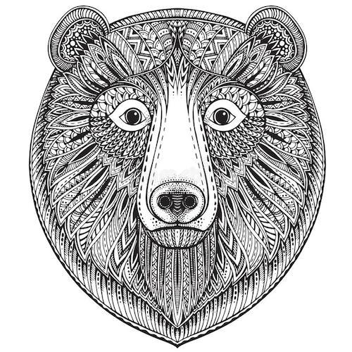 perro cara de oso